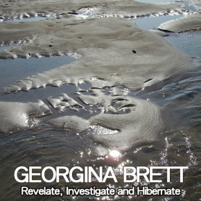 Georgina Brett - Revelate, Investigate and Hibernate